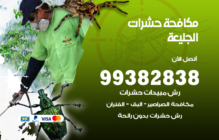 مكافحة حشرات الجليعة / 99382838 / أفضل شركة مكافحة حشرات في الجليعة