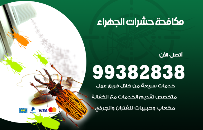 مكافحة حشرات الجهراء / 99382838 / أفضل شركة مكافحة حشرات في الجهراء