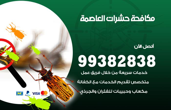 مكافحة حشرات العاصمة / 99382838 / أفضل شركة مكافحة حشرات في العاصمة