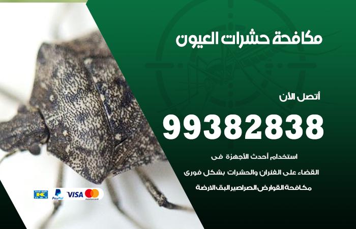 مكافحة حشرات العيون / 99382838 / أفضل شركة مكافحة حشرات في العيون