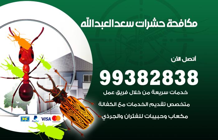 مكافحة حشرات سعد العبدالله / 99382838 / أفضل شركة مكافحة حشرات في سعد العبدالله