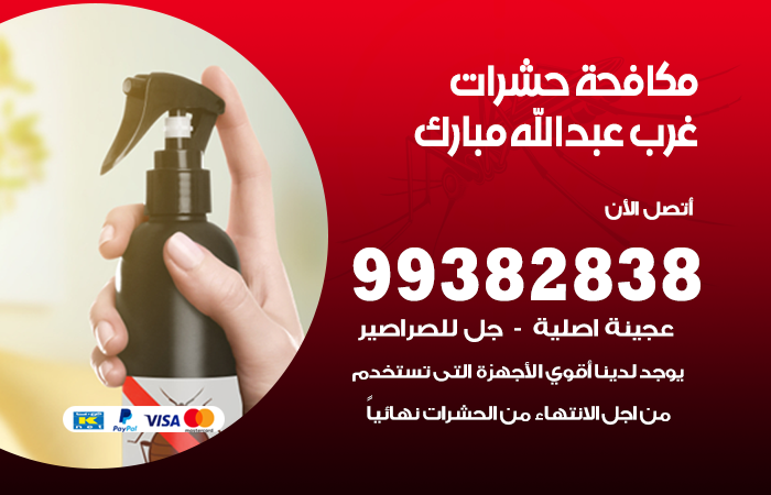مكافحة حشرات غرب عبد الله المبارك / 99382838 / أفضل شركة مكافحة حشرات في غرب عبد الله المبارك