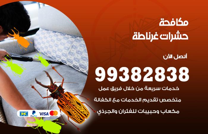 مكافحة حشرات غرناطة / 99382838 / أفضل شركة مكافحة حشرات في غرناطة