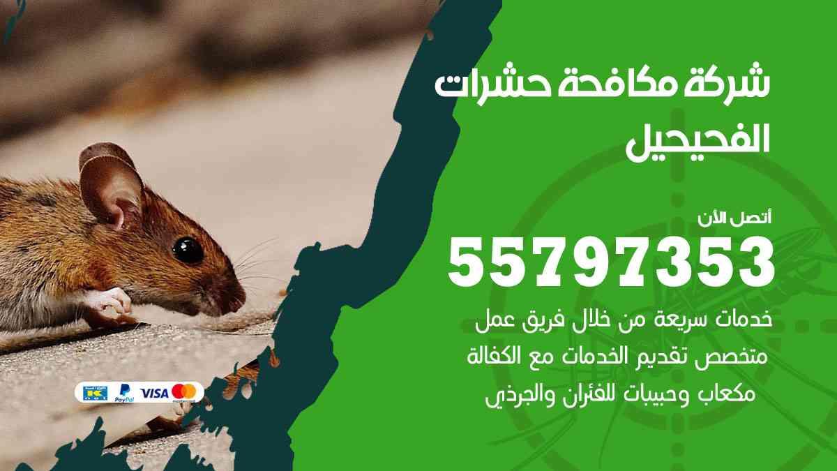 شركة مكافحة حشرات وقوارض الفحيحيل / 50050647 / رش الصراصيروالبق والفئران