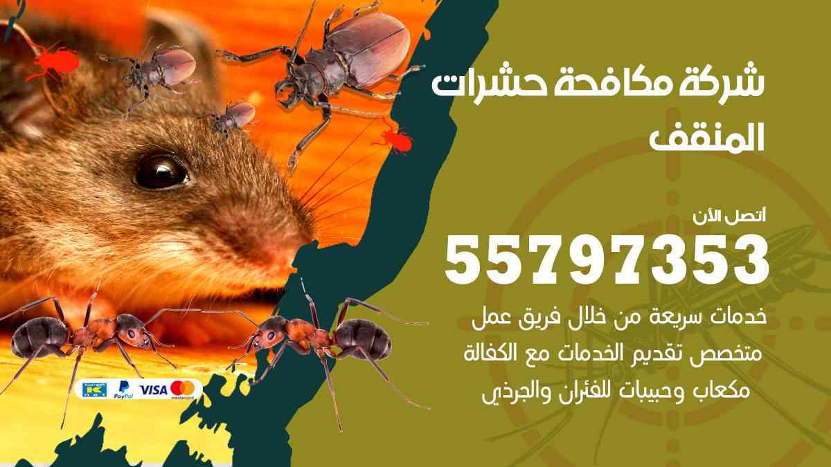 شركة مكافحة حشرات وقوارض المنقف / 50050647 / رش الصراصيروالبق والفئران